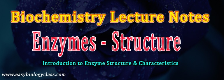 Enzymes short notes