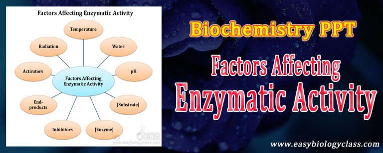 factors controlling enzyme activity ppt