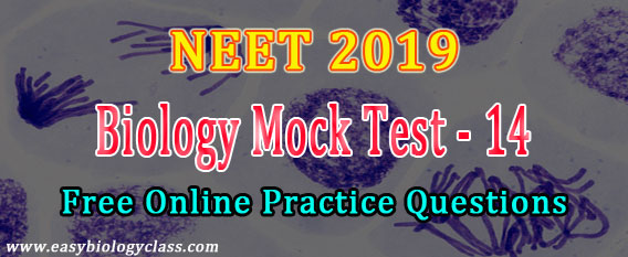 AIIMS Medical Entrance 2019 Paper (Model) | easybiologyclass