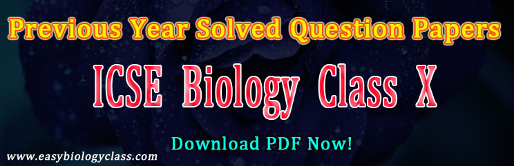 ICSE Class X Solved Question Papers-2019 | easybiologyclass